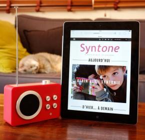 syntone-cat-square